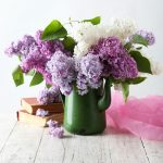 Beautiful lilac in pitcher on white wooden background