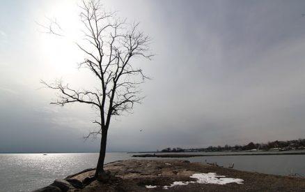 Cove Island in winter time