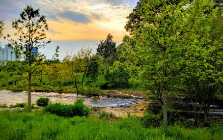 The riverbanks of Mill River Park, one of the best things to do in Stamford, Connecticut