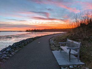 Park bench at sunset at Cos Cob Park