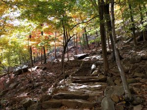 hiking trail in bear mountain state park, one of the best hiking trails near greenwich ct and nyc