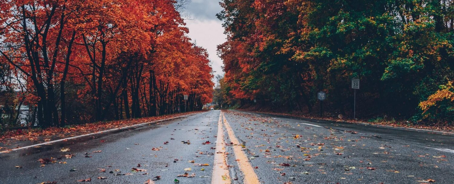 scene of a road along one of the best connecticut fall foliage driving routes
