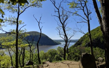 view from a hiking trail in hudson highlands state park