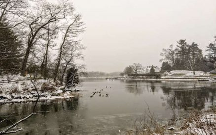 visiting bruce park in winter is one of the best things to do in greenwich ct in winter