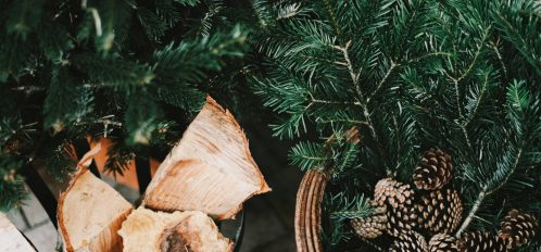 visiting holiday markets, one of the best things to do in connecticut in december