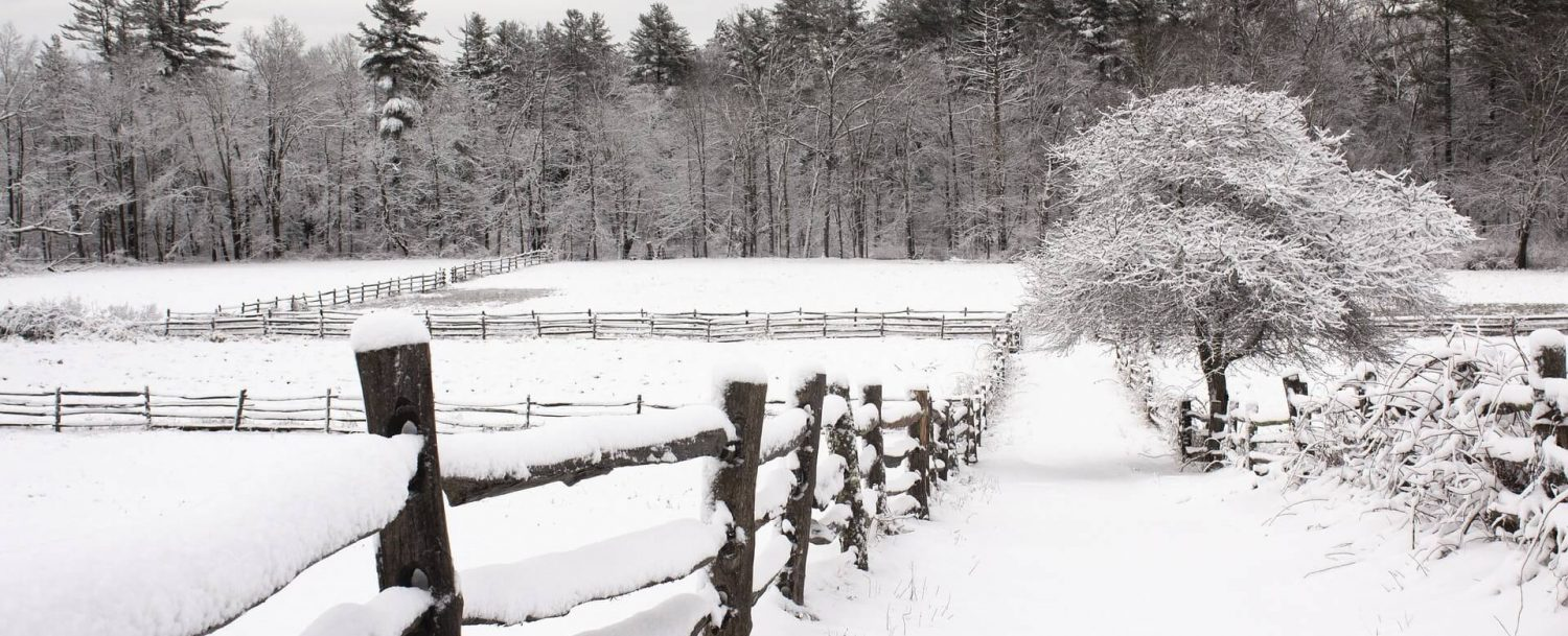snowy fields of a farm during winter in connecticut