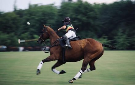 Polo player playing a game of polo