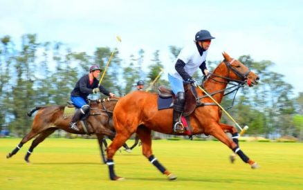 watching a polo match is one of the most unique date ideas in CT on this list