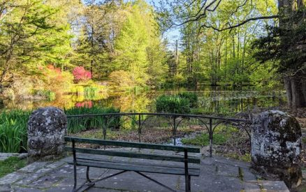 Park bench overlooking at pond at Montgomery Pinetum in Cos Cob