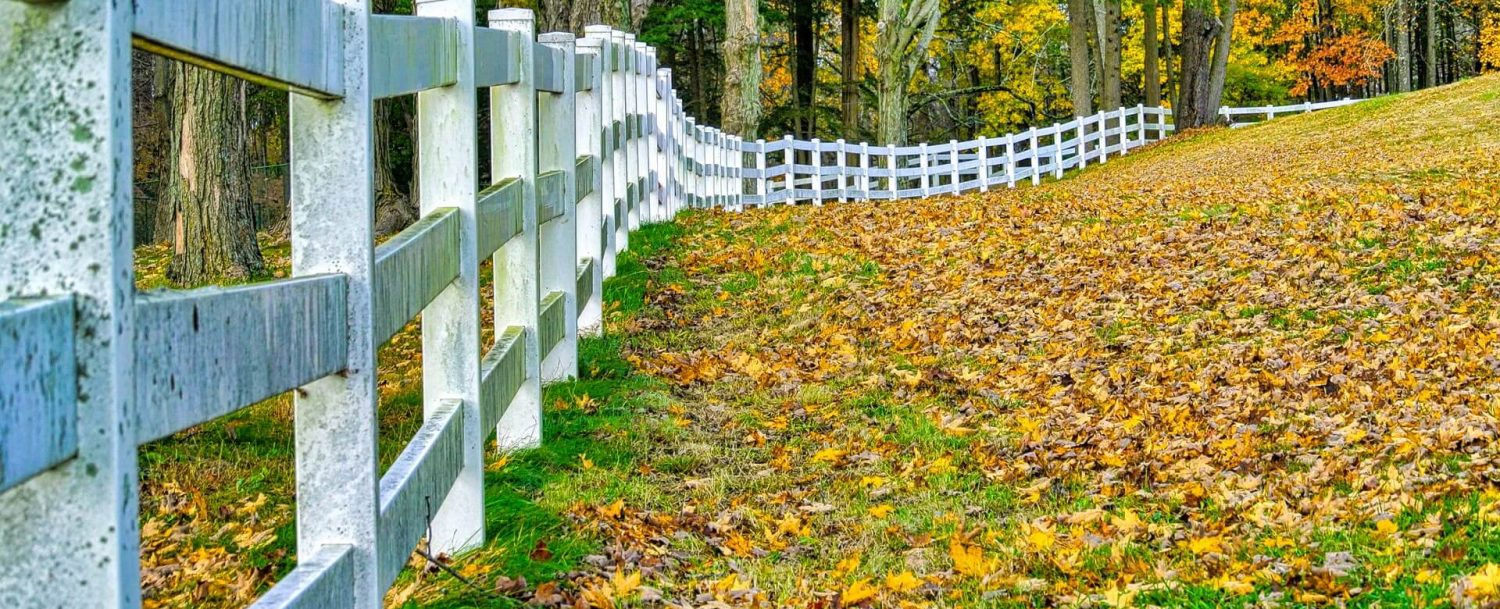 fence pasture in fall, exploring the area is one of the best things to do in danbury ct